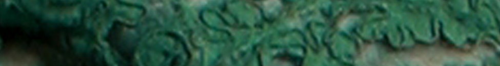 Header-Green-Lace.png